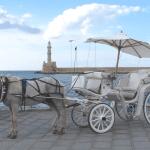 Hochzeitskutsche einfahc heiraten